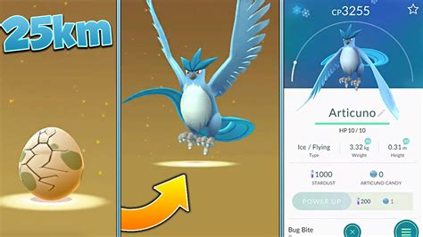 New 25km Egg Hatching A Legendary Pokemon! (articuno