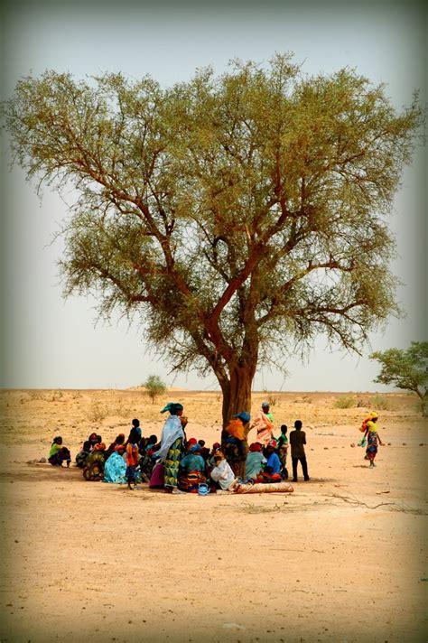 top  ideas  niger  pinterest seasons
