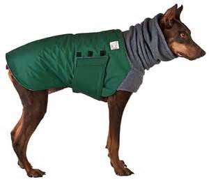 gallery for gt winter dog coats
