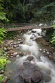 Poring Hot Spring, Sabah, Borneo Malaysia Stock Photo ...