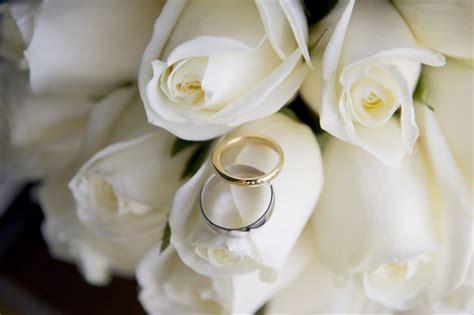gambar menanam putih daun bunga cinta kuning