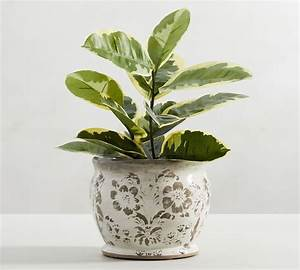 Collette, Handcrafted, Floral, Terra, Cotta, Planter