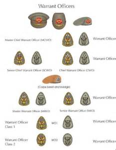 South African Army Rank Insignia