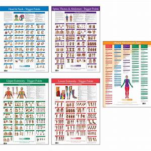 Trigger Point Charts  Wall Set