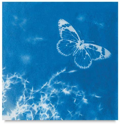 sun prints nature print paper blick art materials