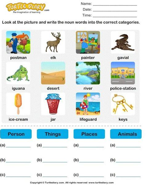 sort nouns  person place animal   turtlediary