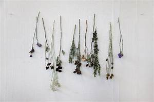 DIY Decor: How To Use Dried Flowers