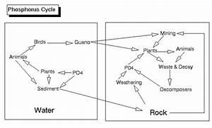 Lon-capa Environmental Biology Sequence