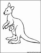 Kangaroo Coloring Pages Printable Kangaroos Australia Animal Australian Google Printables Clipart Wallabies Wallaby Getcoloringpages Clipartmag Library Fun Jerome Soliz Stories sketch template