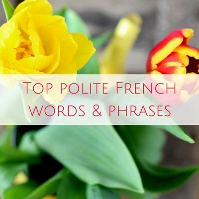 French basics: Useful French travel phrases for a trip to ...