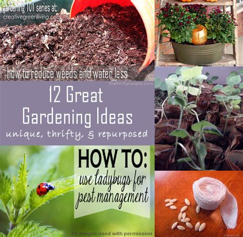 great gardening ideas 12 great gardening ideas unique thrifty and repurposed