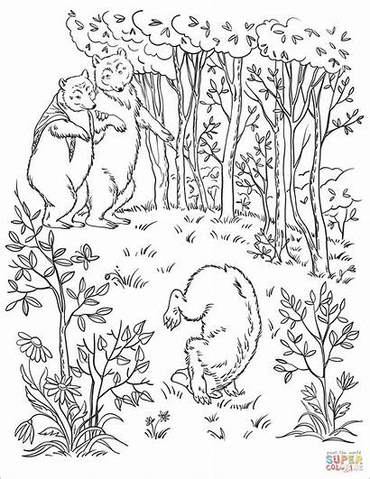 Coloring Bears Wood Three Into Pages Walk