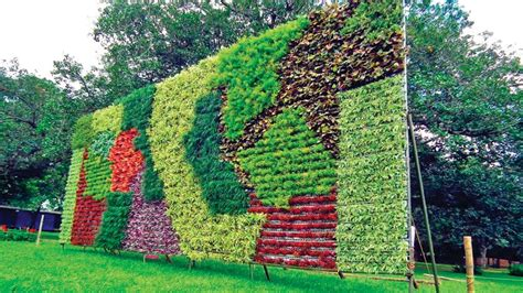 Used In Vertical Gardens by Go Green Delhi Government Promotes Vertical Gardening To