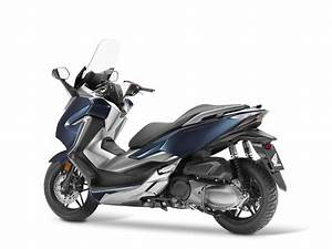 Honda Forza 125 2018 : 2018 honda forza announced adventure rider ~ Melissatoandfro.com Idées de Décoration