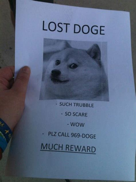 Funniest Doge Meme - another reason to thank the internet gifting us the doge meme funny memes