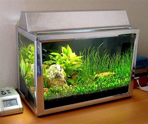 2 5 gallon glass aquarium aquarium design ideas