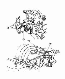Chrysler Town  U0026 Country Connector  Vacuum Hose  With Cap  Manifold  Manifold Vacuum  4 Port