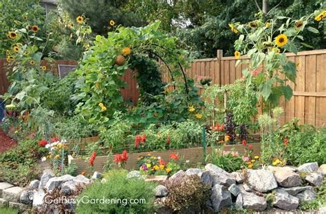 backyard vegetable garden design   plan  vegetable