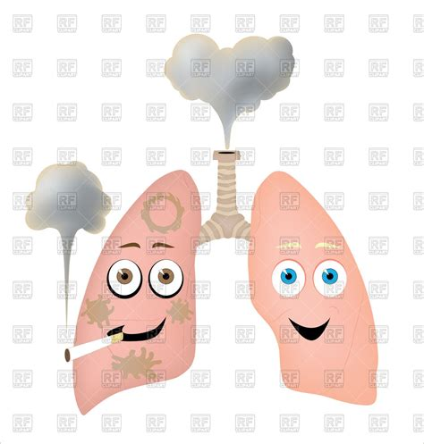 Lungs Clipart Different Styles Of Smoker S Lungs Vector Image