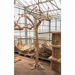 Tronc Bois Flotté : vente de tronc en bois flott 220 cm ~ Dallasstarsshop.com Idées de Décoration