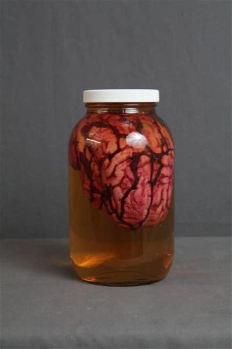 medium human brain prop   large specimen jar dapper cadaver props