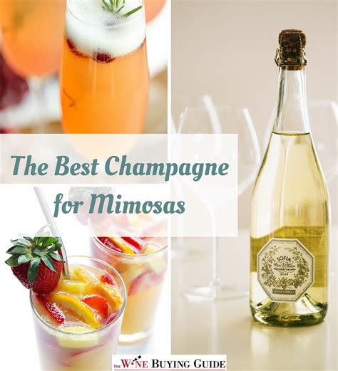 best mimosas the best chagne for mimosas thewinebuyingguide com