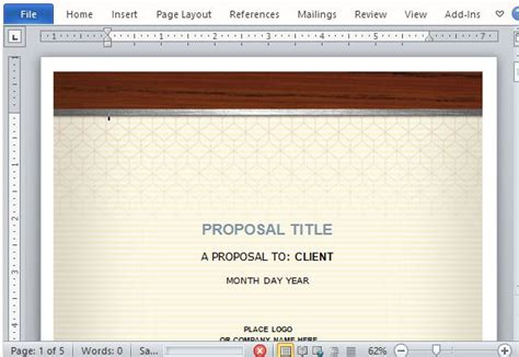 health care proposal template  word
