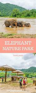 362 best Thailand Travel Lovers images on Pinterest ...