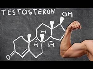 Maße Berechnen Frau : testosteron gigantische vorteile muskelkraft masse mann ~ Haus.voiturepedia.club Haus und Dekorationen
