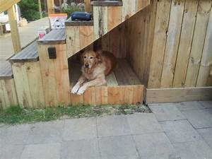 dog house under stairway use outside shade for pet With under deck dog kennel