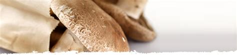how to store mushrooms storing portobello mushrooms bertolli