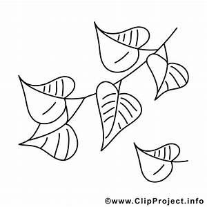 Birkenblaetter Bild Vorlage Zum Malen Herbst