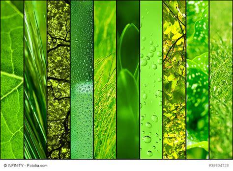 Die Farbe Grün gr 252 n ist nicht nur die farbe der hoffnung rosacea