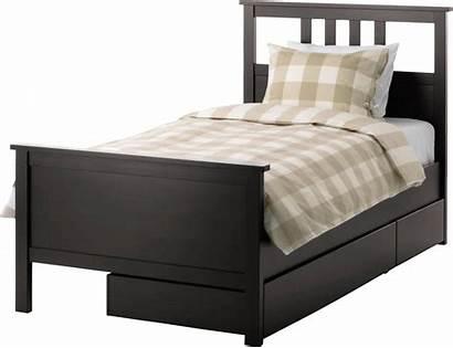 Bed Transparent Background Clipart Beds Mattress Bunk