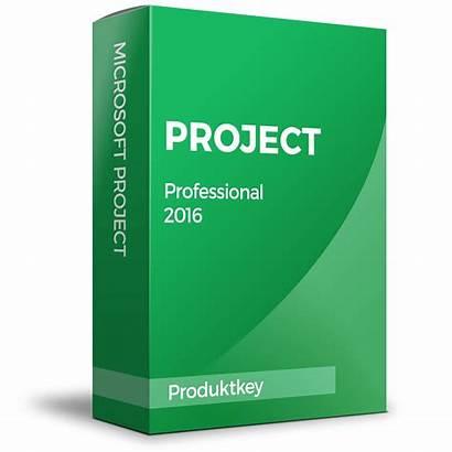 Project Microsoft Professional Ms
