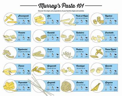 Pasta Shapes Guide Types Many Illustrated Italian
