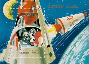 Laika, The Story Of The Soviet Space Dog That Orbited The ...