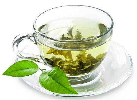 Battle of the Teas! Green Tea vs Oolong Tea, Which is Better?