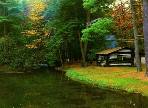 cabins cook forest pa pittsburgh owl scribe cook forest state park is now