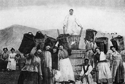 History Wine Wineries Winery Historic Greek Santor