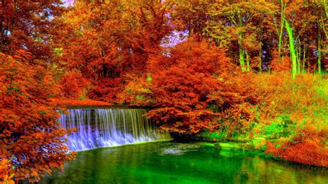 Colourful Autumn Background by 21 Autumn Wallpapers Backgrounds Images Freecreatives