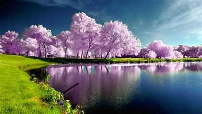 Desktop Spring Nature Landscapes Wallpapersafari