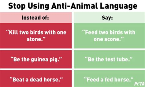 Using anti-animal language is like using racial slurs ...
