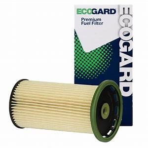 Ecogard Xf10465 Diesel Fuel Filter