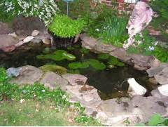 Water Garden Water Garden Goldfish Pond