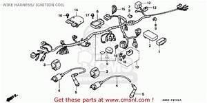 Honda Cb250 Nighthawk 1992  N  Canada    Kph Wire Harness