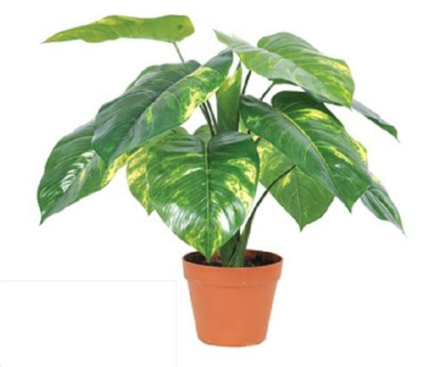 cheap indoor plants popular artificial trees indoor buy cheap artificial trees