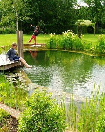 Clean Backyard Pond - pools are chemical free non toxic places for