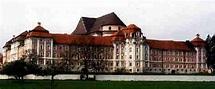 Deutsche Doggen vom Kloster Wiblingen - Wiblingen Abbey