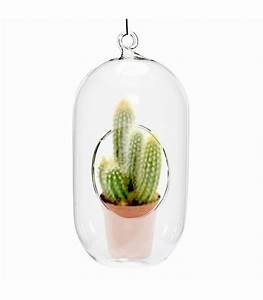 Vase Suspendu En Verre : bulle de verre suspendue vase design ~ Teatrodelosmanantiales.com Idées de Décoration
